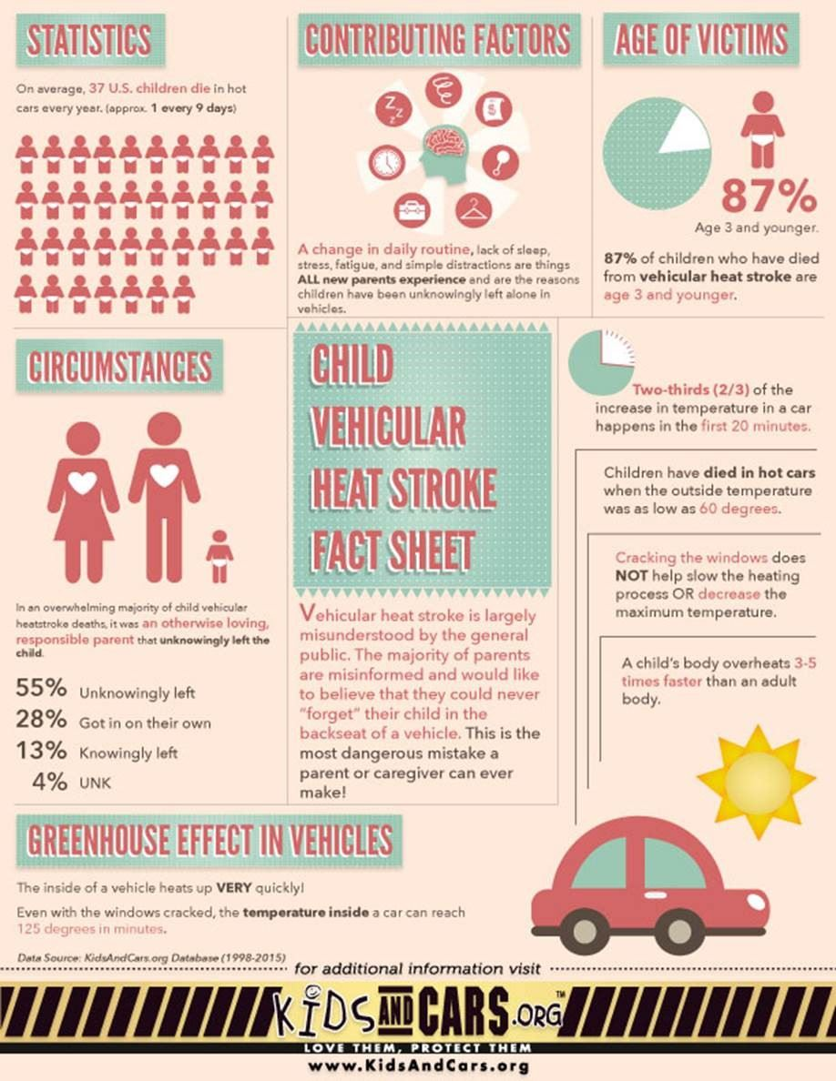 Kids in Hot Cars Infographic